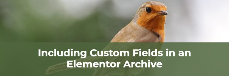 Custom Fields In Elementor Archive