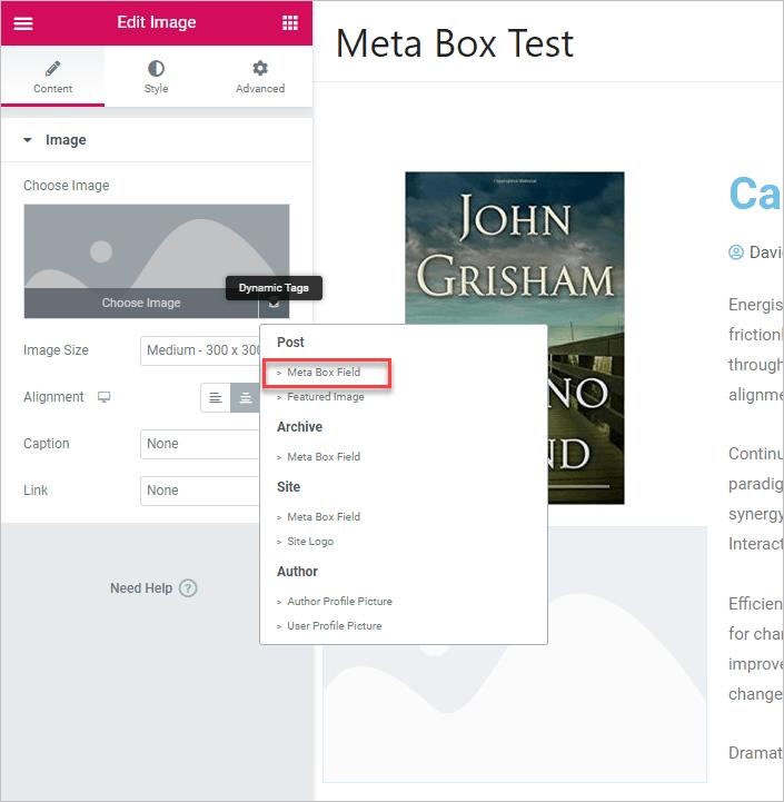 Dynaimc Tag Meta Box Field Option