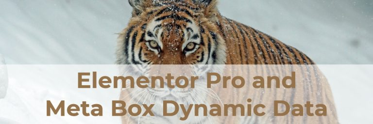 Elementor Pro and Meta Box Dynamic Data