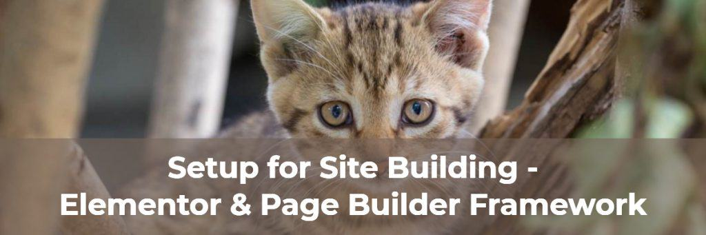 Setup For Site Building Elementor And Page Builder Framework