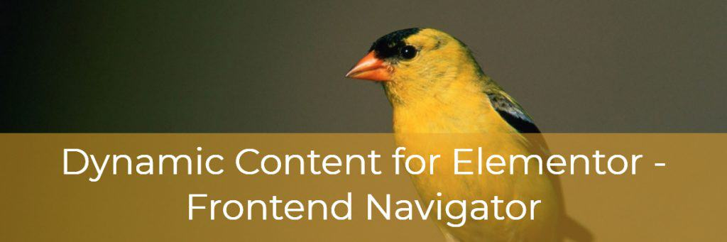 Dynamic Content for Elementor Frontend Navigator