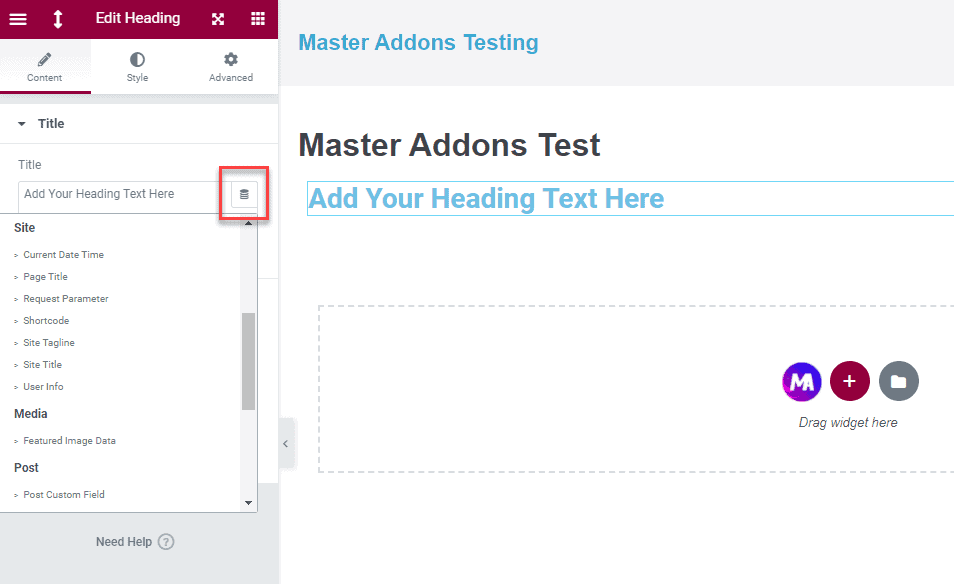 Master Addons Dynamic Tags