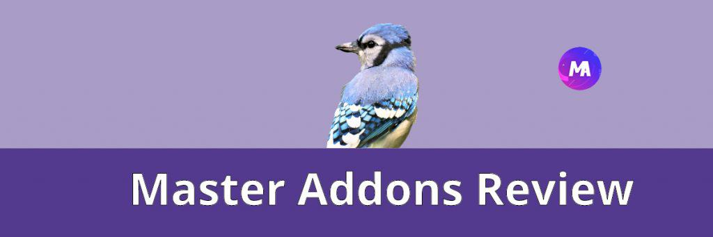Master Addons Review