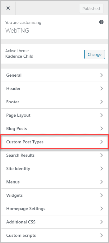 Top Level Of Customizer Link For Custom Post Types
